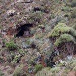 La Palma-Wandern Barranco Fagundo