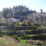 La-Palma-Wandern-El-Castillo-Wanderung