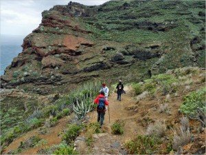 La Palma- Wandern-Im Barranco Fagundo