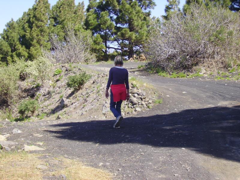 La-Palma-Wanderung-Abzweig-in-die-Weinberge