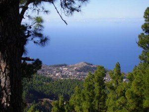 La-PalmaWandern-Aussichtplatz-Tricias-Puntagorda