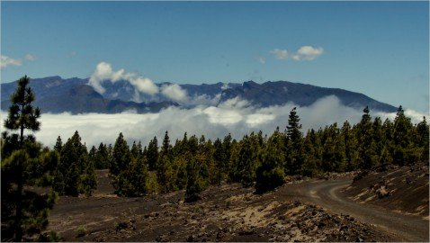 Webcam La Palma Bejenado