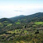 La-Palma-Isla-Verde-Grüne-Insel