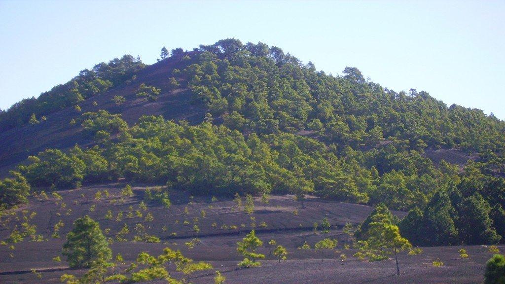 La-Palma-Vulkan-Tacanda-Montaña-Quemada