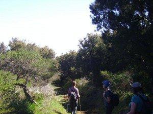 La-Palma-Wanderung