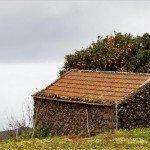 La Palma-Wanderung-Mazo