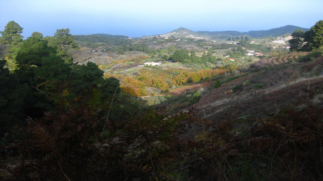 La Palma-Wanderung-Norden
