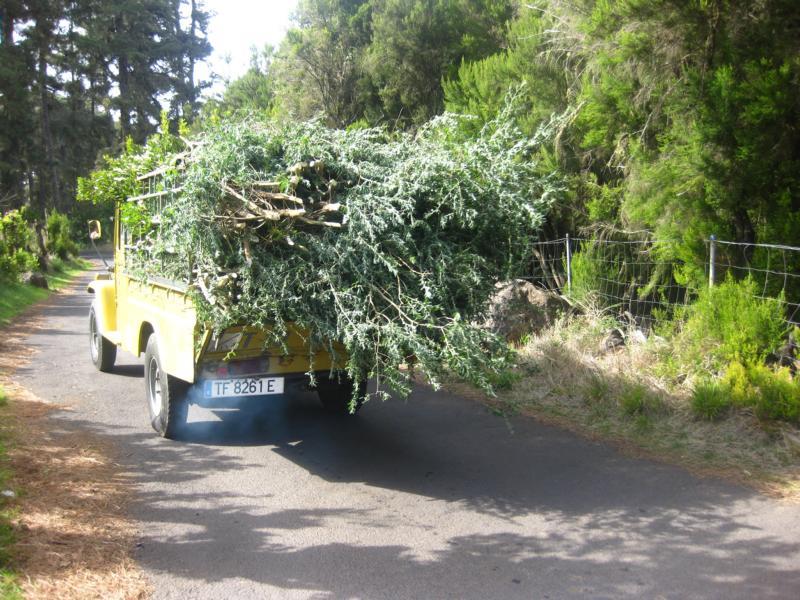 La Palma-Beim Wandern im Norden