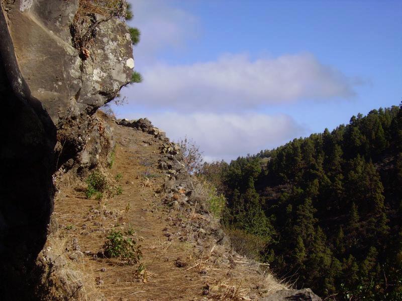 La Palma Wanderwege-Ein Teilstück des Full Moon Trail