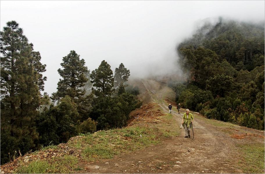 La Palma-Wanderung LP-20