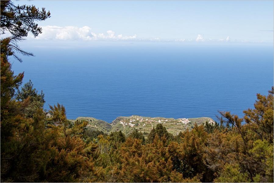 La Palma-Wanderungen|Barlovento Barranco Gallegos