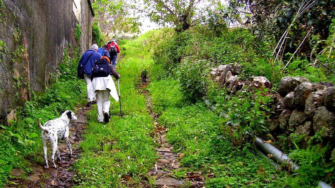 La-Palma-Wanderweg