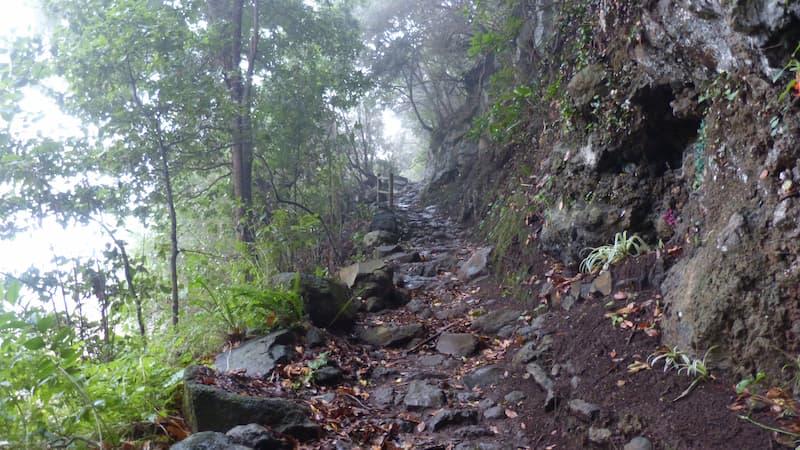Quellenwanderung-san-pedro fuentes de las bre-la-palma-wandern