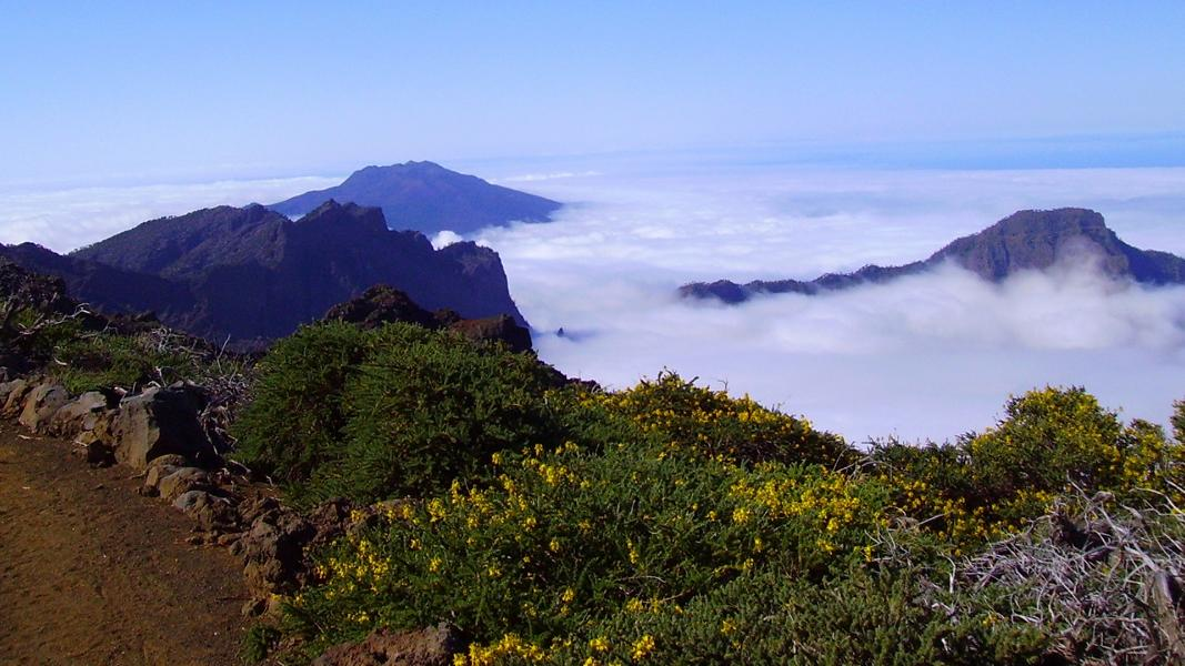 Wandern-über-den-Wolken-La-Palma