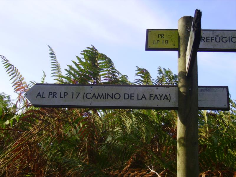 Wandern-Caminode-La-Faya-La-Palma