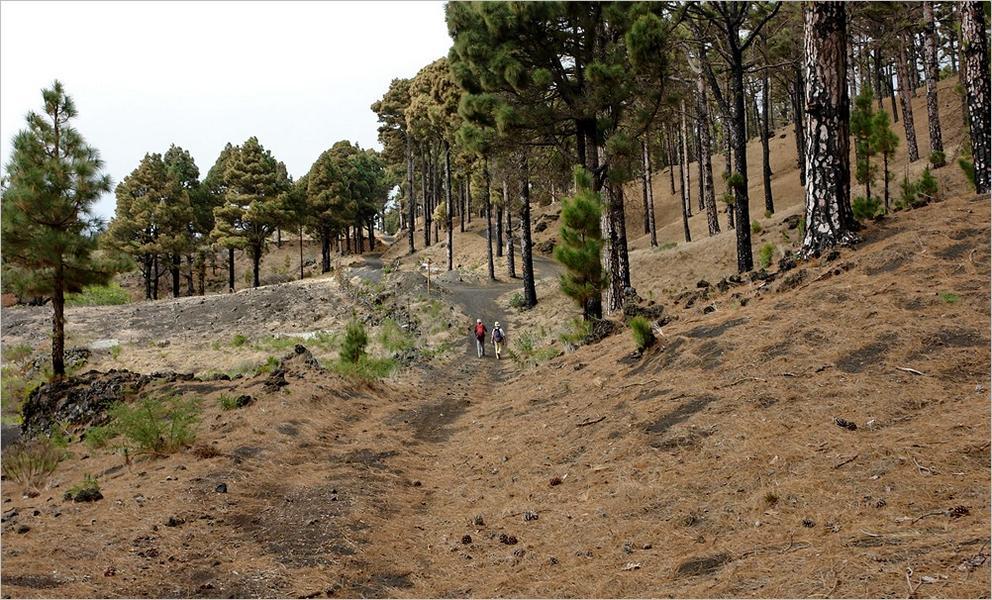 Wandern auf La Palma-Küstenwanderweg GR-130