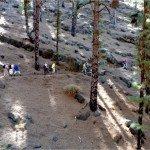 La Palma-Wanderweg-LP 10