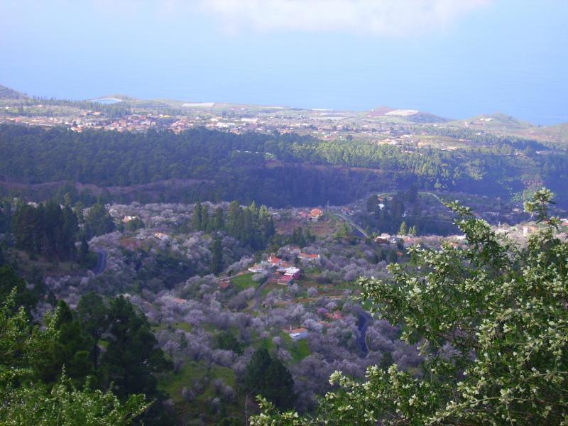La Palma Wanderwege-Neue Wanderwege in Puntagorda