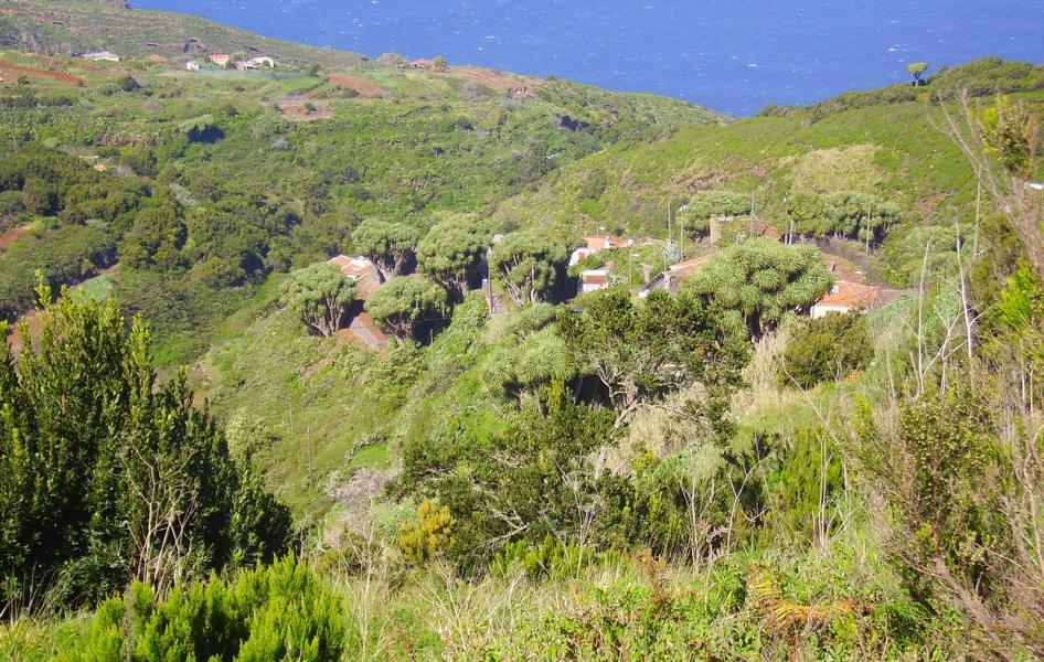 La-Palma-Wandern-Ausblick-vom-Mirador-La-Tosca.