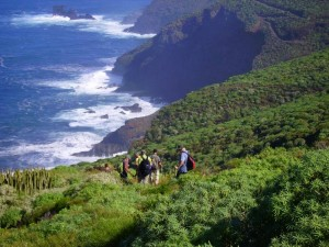 La-Palma-Wanderung Lomada Grande