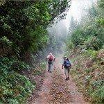 La Palma-Wanderung-SL SC 14