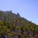 La-Palma-Wanderungen-Campanarius