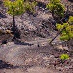 La-Palma-Wanderwege-Auf-dem-Wanderweg-PR-LP-15.