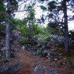 La-Palma-Wanderwege-PR-LP-15