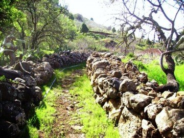 La Palma Wandern-Alter-Camino