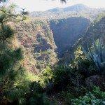 La Palma Wandern-Barranco Izcagua