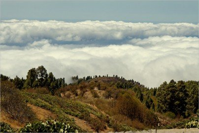 La Palma-Wandern-In den Weinbergen von Puntagorda-Ralf Köhler