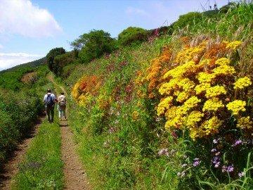 La-Palma-Wanderwege-Wandern-im-Osten-der-Insel-La-Palma