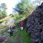 La-Palma-Wandern-Wanderweg-PR-LP-20