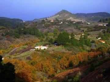 La-Palma-Wandern-Weinberge-von-Hoya-Grande1
