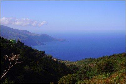 La-Palma-Ausblick-auf-das-Naturschutzgebiet-Guelguen