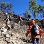 La Palma Wandern-Kurz vor dem Gipfel des Nambroque