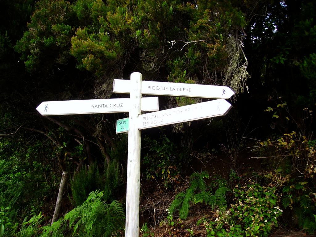 La-Palma-Wanderwege-Beginn-des-Wanderwegs-SL-PL-20
