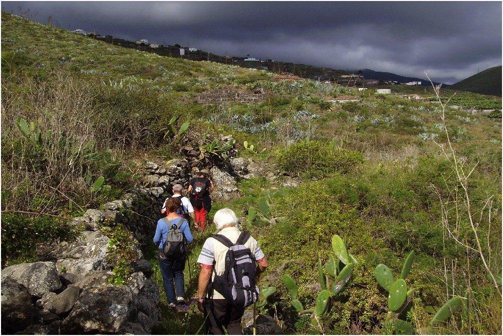 La-Palma-Wandern-Auf-dem-Küstenwanderweg-im-Nordosten