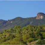 La-Palma-Wandern-Blick-zum-Roque-Niquiomo