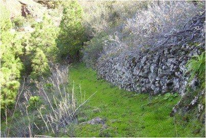 La-Palma-Wandern-Puntagorda-Wanderpfad