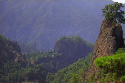 La-Palma-Wandern-Roque-Huso-und-Idafe