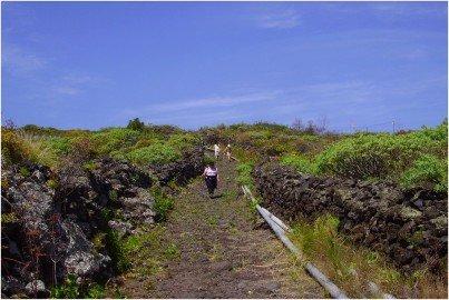 La-Palma-Wanderwege-PR-LP-17