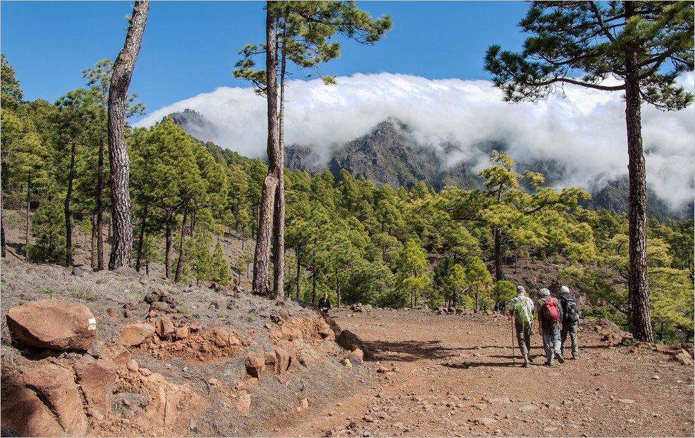 La Palma Foto-Auf einer Wanderung zu den Petroglyphen von Tamarahoya