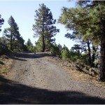 La-Palma-Wanderungen-Rundwanderung-Tacande