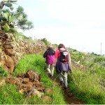 La-Palma-Wanderwege-Küstenwanderweg-in-Tenagua