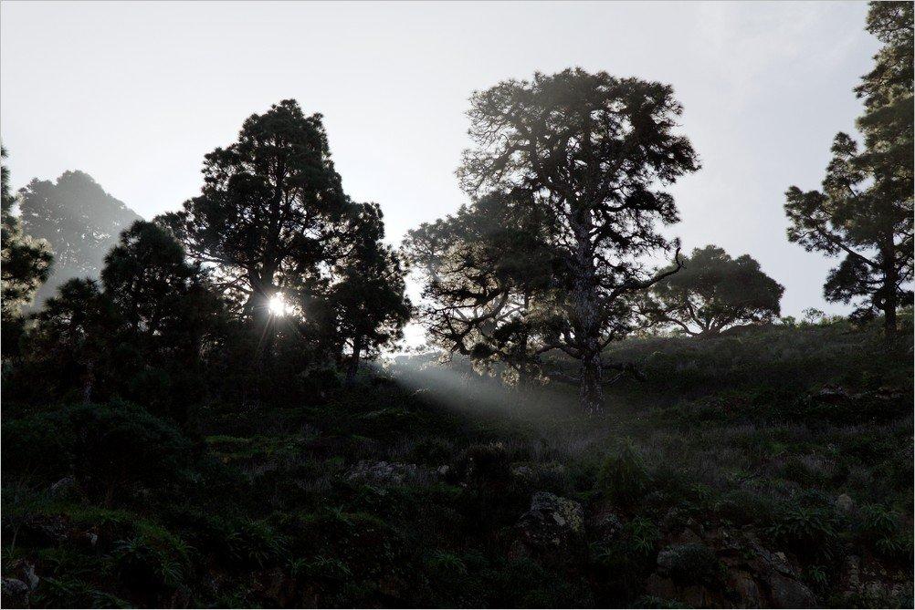 La-Palma-Foto-Lichtstimmungen