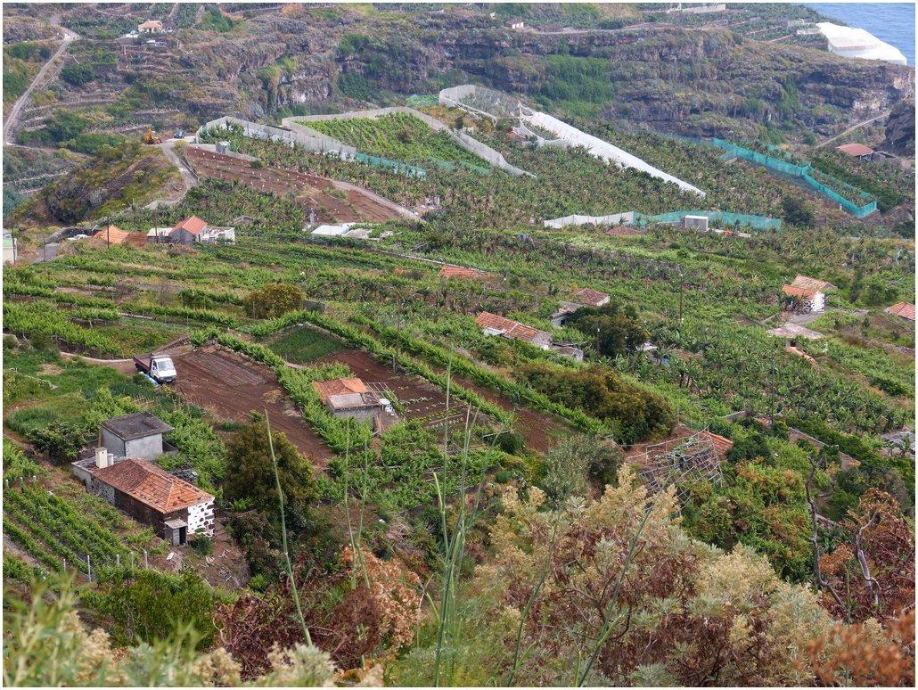La Palma Wandern-La Galga