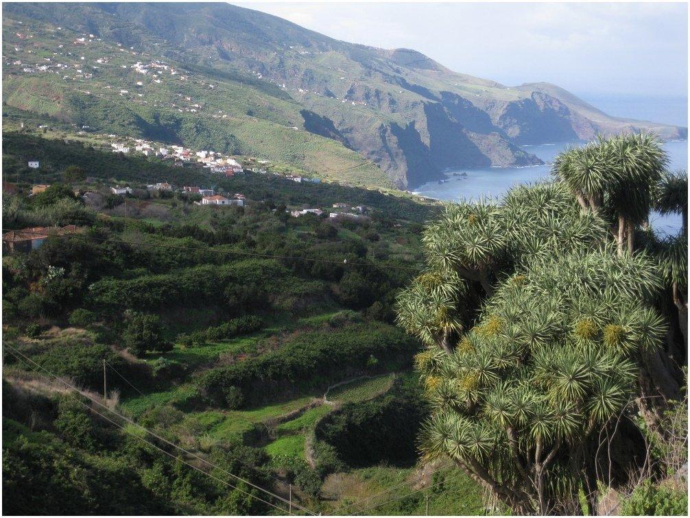 La-Palma-Wandern-Foto-der-Norden.