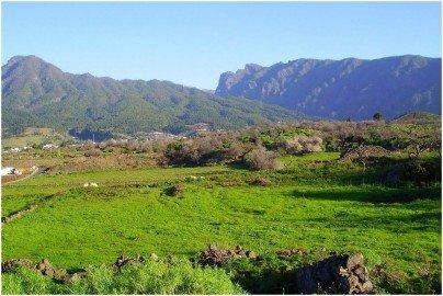 La-Palma-Wandern-Wandern-auf-dem-Wanderweg-LP-14-bei-Moraditas