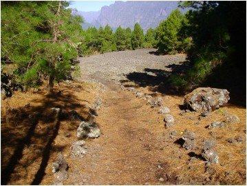 Wanderweg-PR-LP-14 bim Vulkan Quemadas